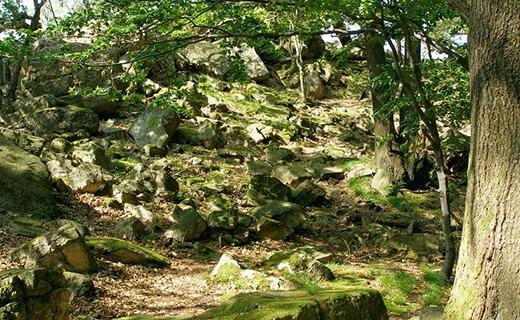 Tisové skaly